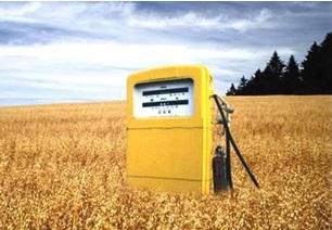 Fuente: http://www.isolari.es/biocombustibles