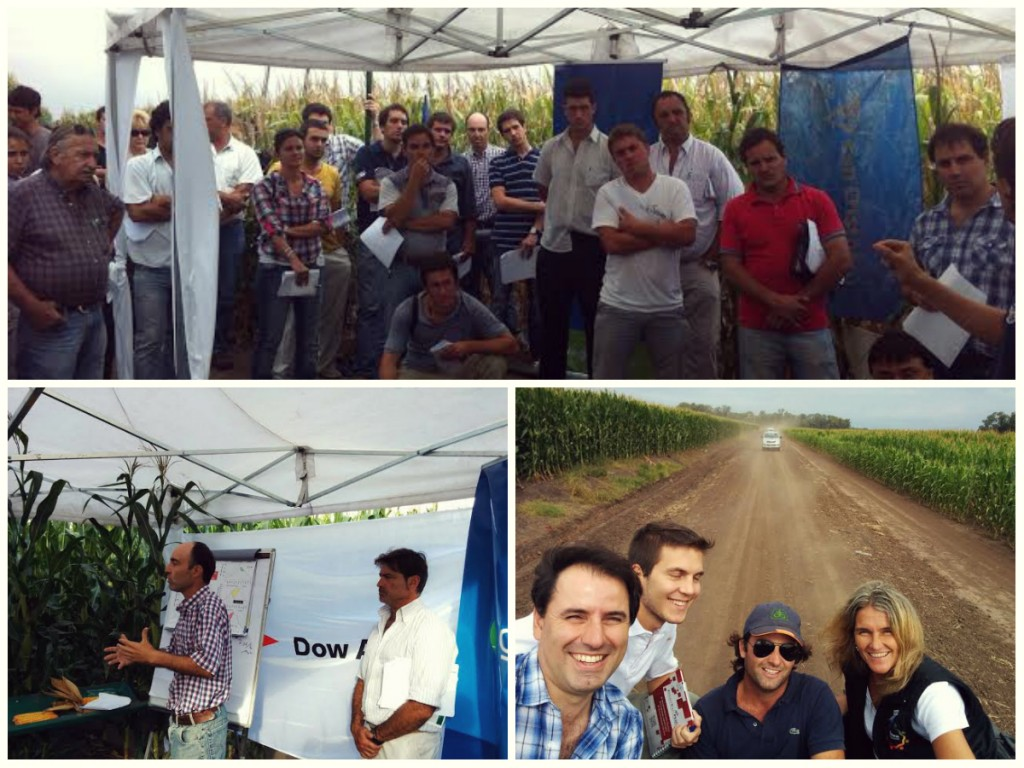 collage Jornada Chacabuco 250215